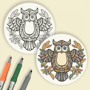 owl coloring coasters
